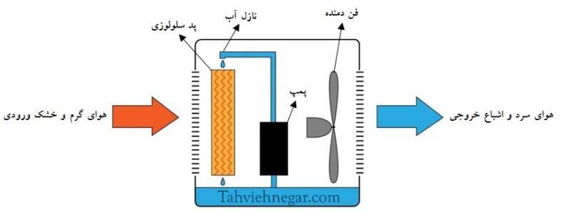 اجزای اصلی تشکیل دهنده دستگاه زنت